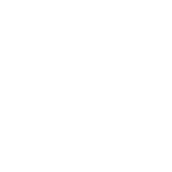 favicon essetre asti logo white